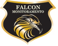 Grupo Falcon